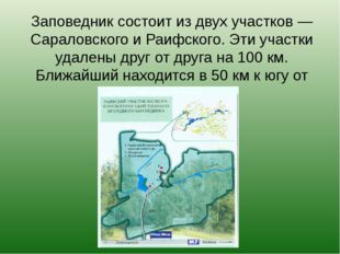 Заповедник состоит из двух участков — Сараловского и Раифского. Эти участки у