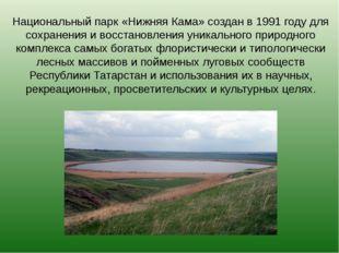 Национальный парк «Нижняя Кама» создан в 1991 году для сохранения и восстанов