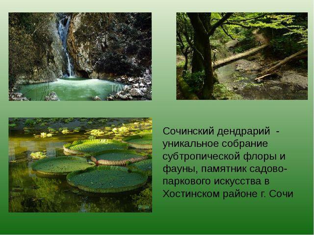 Сочинский дендрарий - уникальное собрание субтропической флоры и фауны, памят...