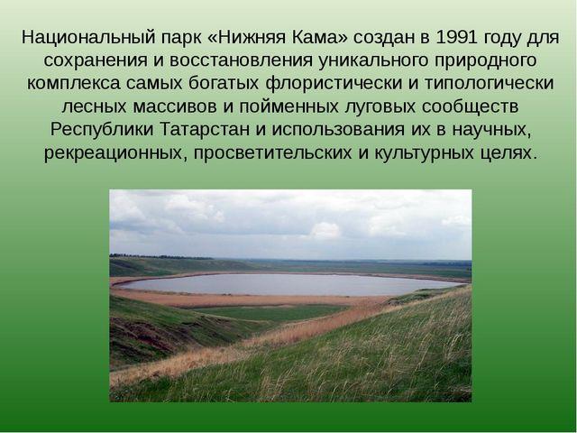 Национальный парк «Нижняя Кама» создан в 1991 году для сохранения и восстанов...