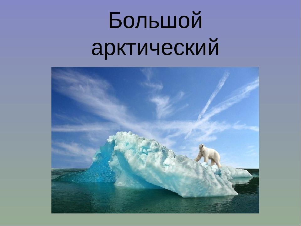 Большой арктический заповедник