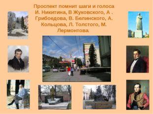 Проспект помнит шаги и голоса И. Никитина, В Жуковского, А . Грибоедова, В. Б