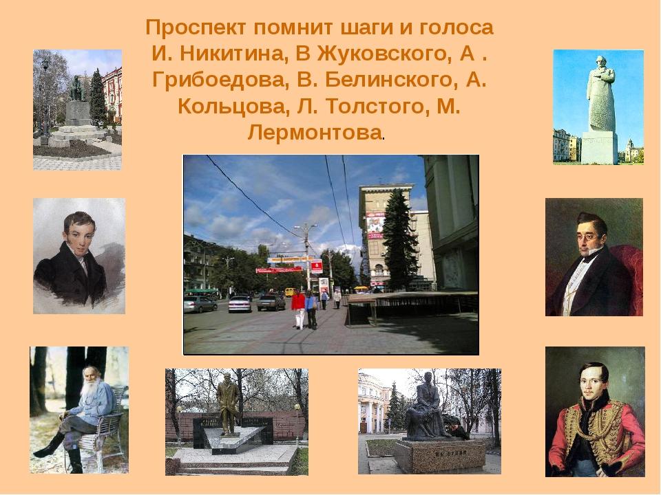 Проспект помнит шаги и голоса И. Никитина, В Жуковского, А . Грибоедова, В. Б...