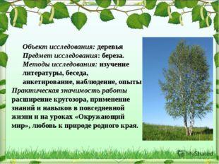 Объект исследования: деревья Предмет исследования: береза. Методы исследовани