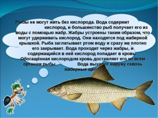 Рыбы не могут жить без кислорода. Вода содержит кислород, и большинство рыб п