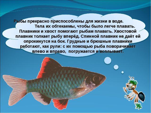 Рыбы прекрасно приспособлены для жизни в воде. Тела их обтекаемы, чтобы было...