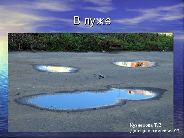 В луже Кузнецова Т.В. Донецкая гимназия 92