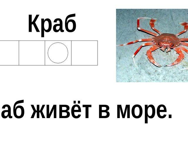 Краб Краб живёт в море.