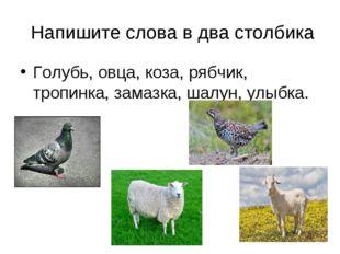 Напишите слова в два столбика Голубь, овца, коза, рябчик, тропинка, замазка,