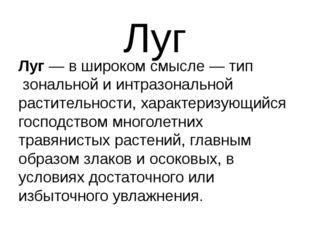 Луг Луг— в широком смысле—типзональной иинтразональнойрастительности, х