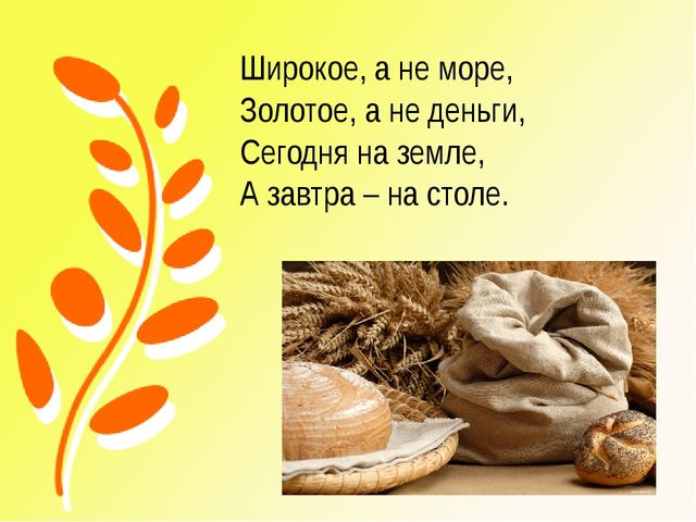 Широкое, а не море, Золотое, а не деньги, Сегодня на земле, А завтра – на сто...