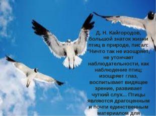 """Д. Н. Кайгородов, большой знаток жизни птиц в природе, писал: """"Ничто так не"""