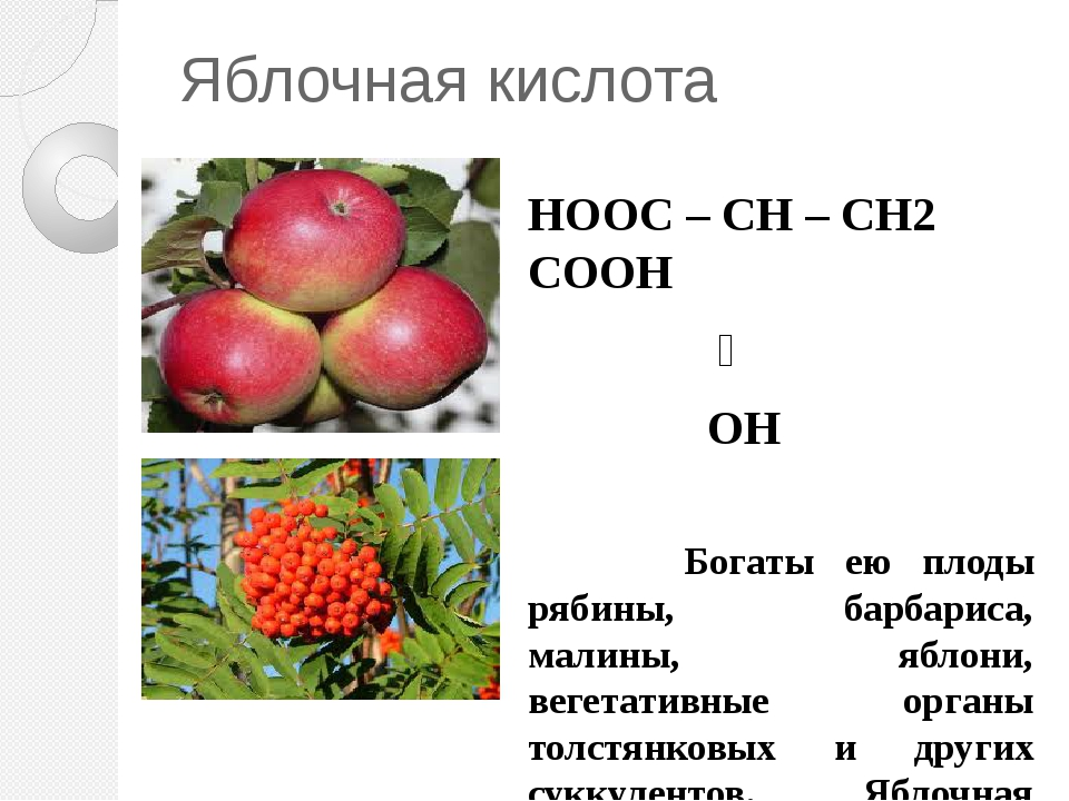 Яблочная кислота НООС – CH – CH2 COOH ׀ OH Богаты ею плоды рябины, барбариса,...