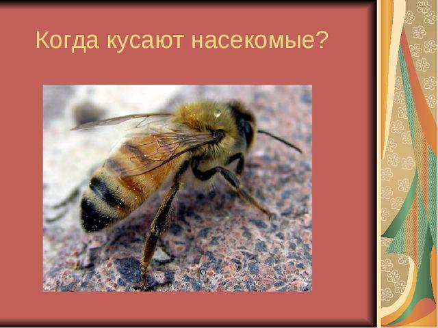 Когда кусают насекомые?