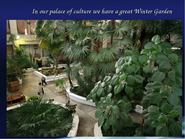 In our palace of culture we have a great Winter Garden