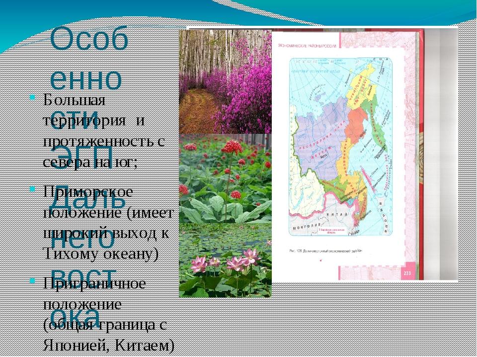 Особенности ЭГП Дальнего востока Большая территория и протяженность с севера...