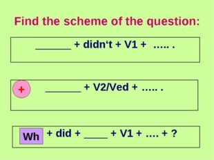 Find the scheme of the question: + Wh ______ + didn't + V1 + ….. . ______ + V