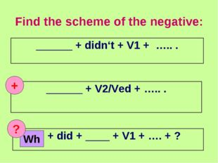 Find the scheme of the negative: + Wh ? ______ + didn't + V1 + ….. . ______ +