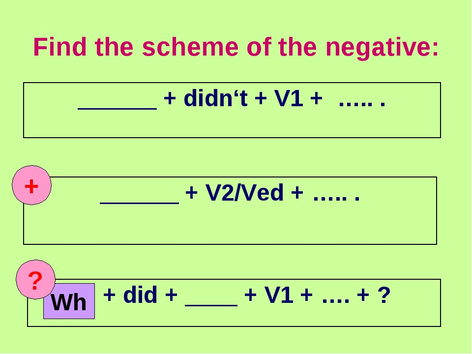 Find the scheme of the negative: + Wh ? ______ + didn't + V1 + ….. . ______ +...