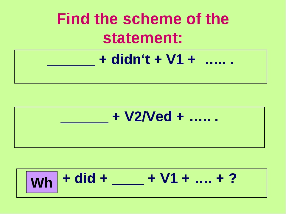 Find the scheme of the statement: Wh ______ + didn't + V1 + ….. . ______ + V2...