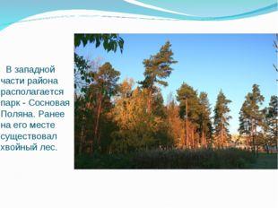 В западной части района располагается парк - Сосновая Поляна. Ранее на его м