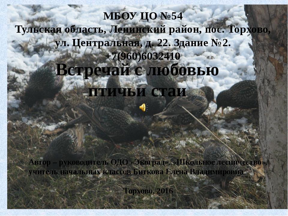 Встречай с любовью птичьи стаи МБОУ ЦО №54 Тульская область, Ленинский район,...
