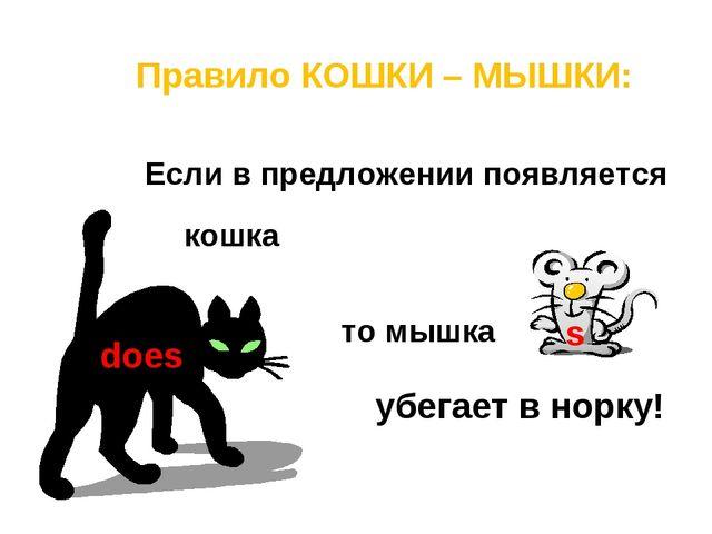 Правило КОШКИ – МЫШКИ: Если в предложении появляется то мышка does s убегает...