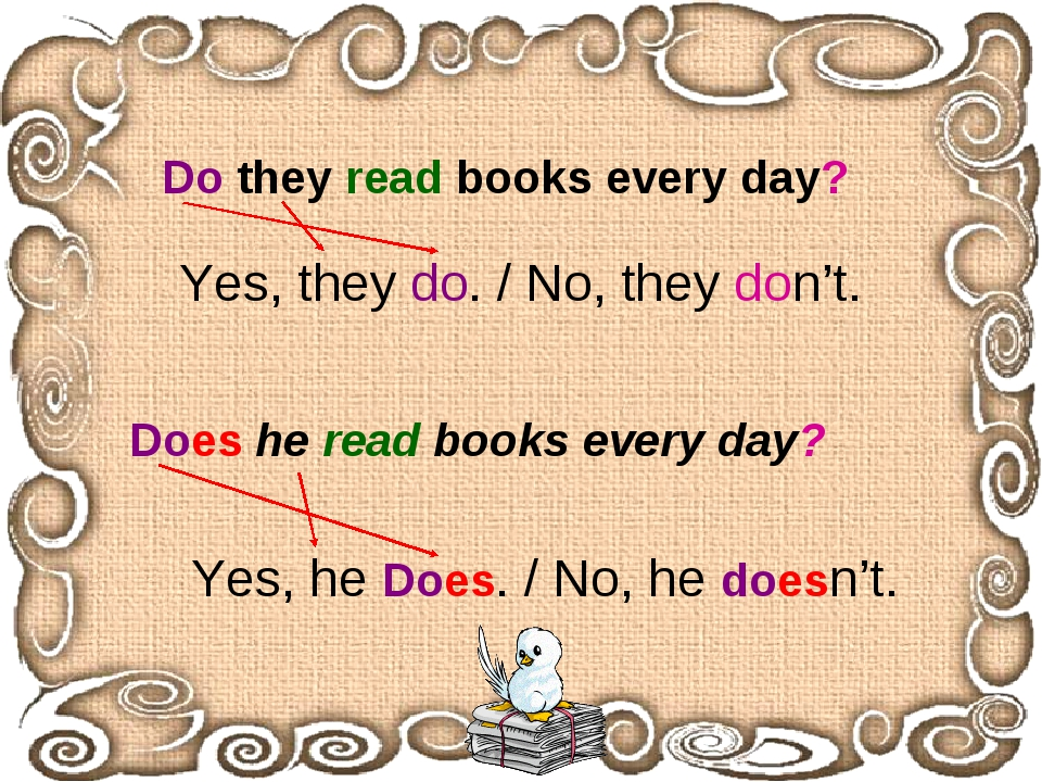 Do they read books every day? Does he read books every day? Yes, they do. / N...