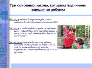 Три основных закона, которым подчинено поведение ребенка 1-й закон – дети выб