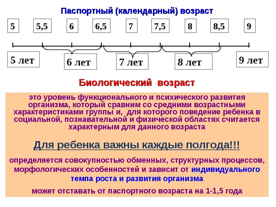 Паспортный (календарный) возраст Биологический возраст это уровень функционал...