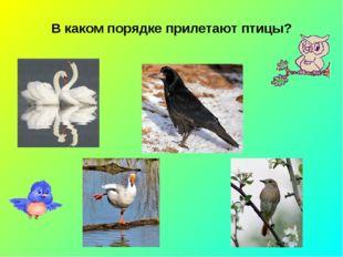 В каком порядке прилетают птицы?