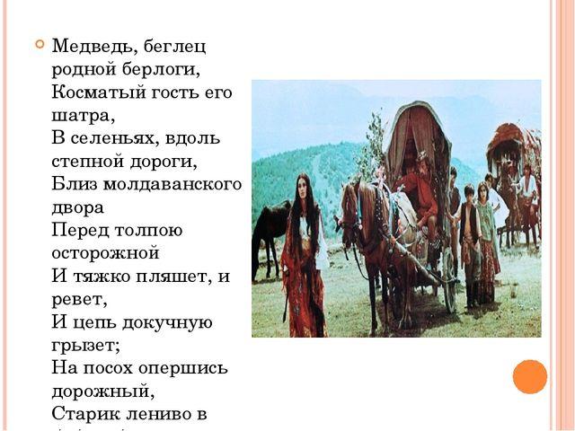 Медведь, беглец родной берлоги, Косматый гость его шатра, В селеньях, вдоль с...