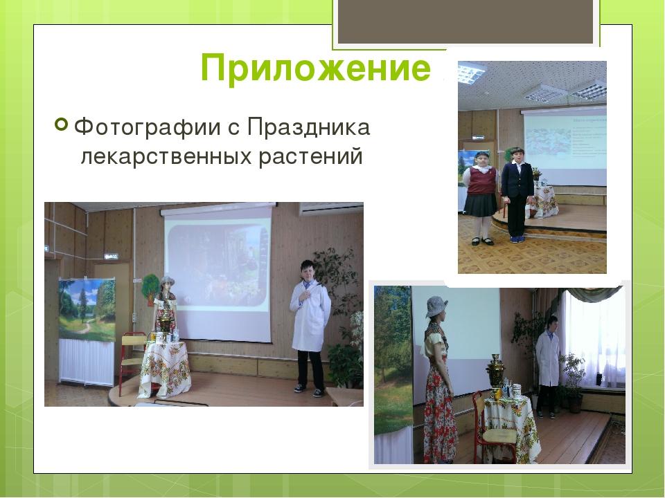 Приложение 2 Фотографии с Праздника лекарственных растений