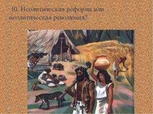 10. Неолитическая реформа или неолитическая революция?