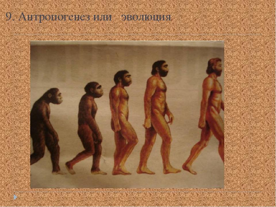 9. Антропогенез или эволюция