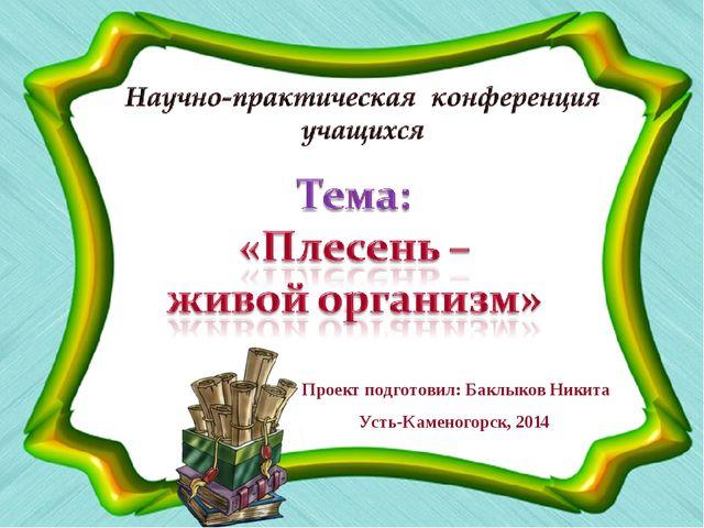 Проект подготовил: Баклыков Никита Усть-Каменогорск, 2014