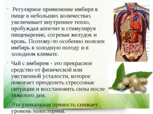 Регулярное применение имбиря в пище в небольших количествах увеличивает внут