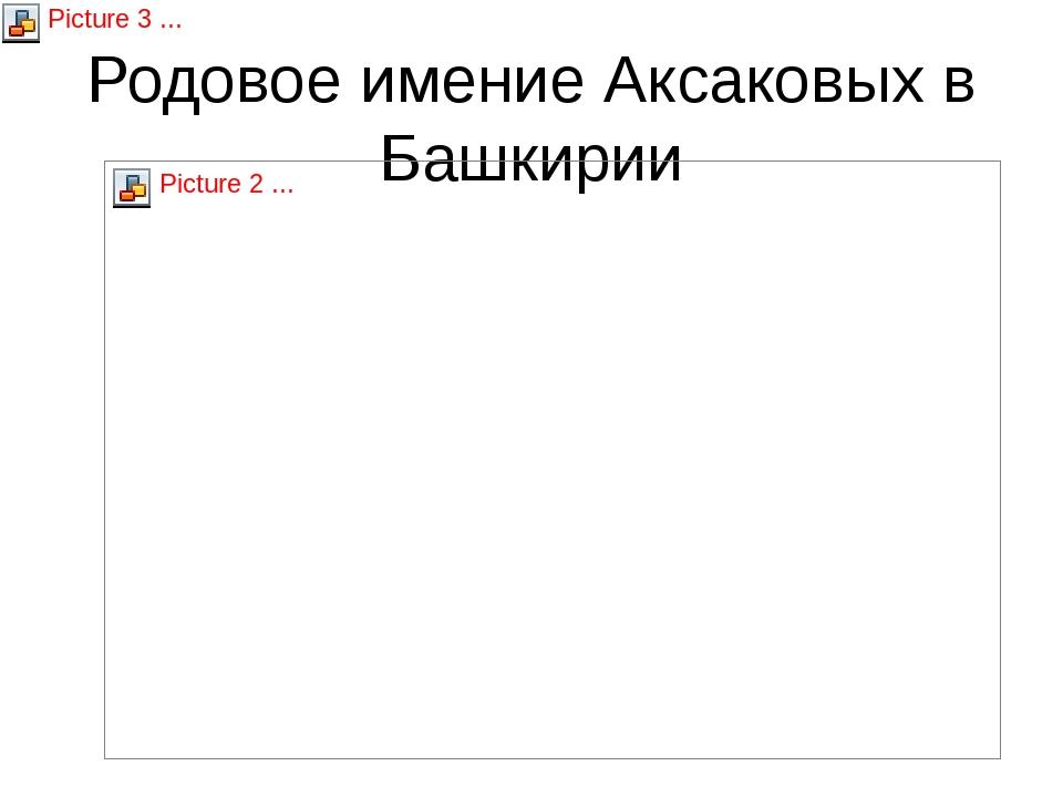 Родовое имение Аксаковых в Башкирии