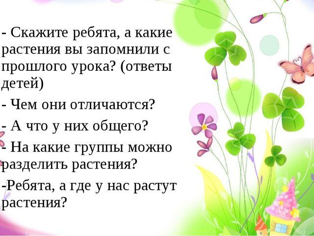 - Скажите ребята, а какие растения вы запомнили с прошлого урока? (ответы дет...