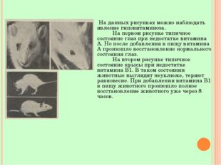 На данных рисунках можно наблюдать явление гиповитаминоза. На первом рисунке