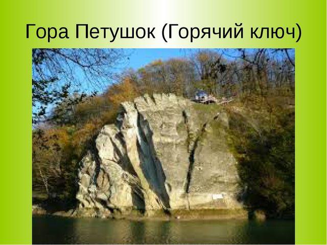 Гора Петушок (Горячий ключ)