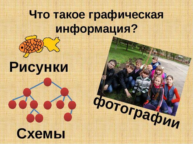 Что такое графическая информация? Рисунки фотографии Схемы