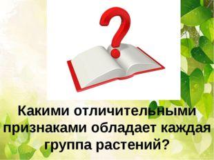 Какими отличительными признаками обладает каждая группа растений?