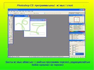 Photoshop CS программасының жұмыс үстелі Басты жұмыс аймағын құрайтын програ