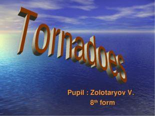 Pupil : Zolotaryov V. 8th form