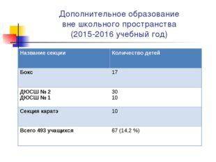 Дополнительное образование вне школьного пространства (2015-2016 учебный год)