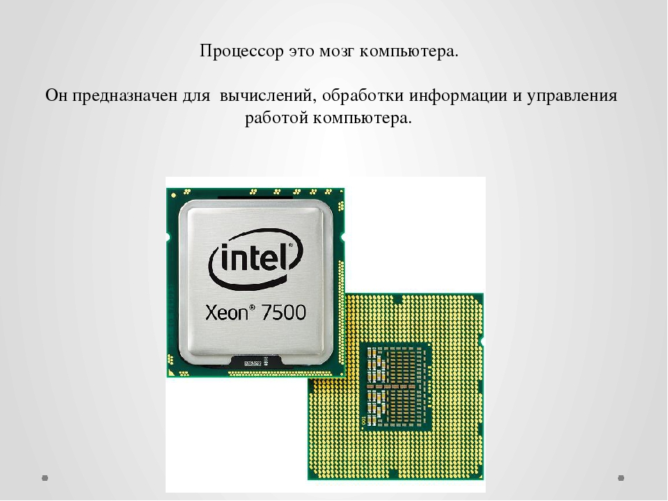 Процессор это мозг компьютера. Он предназначен для вычислений, обработки инфо...