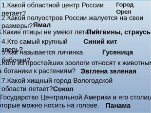 1.Какой областной центр России летает? Город Орел 2.Какой полуостров России