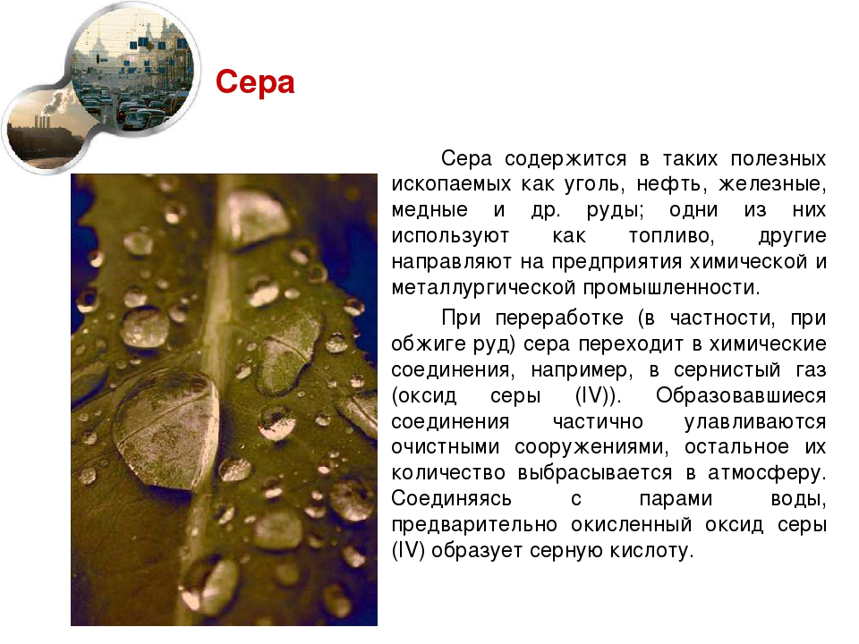 Сера Сера содержится в таких полезных ископаемых как уголь, нефть, железные,...