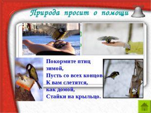 Природа просит о помощи Что птицам страшнее холод или голод зимы? Покормите п